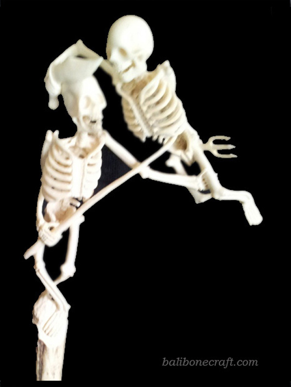 Skull Fighting