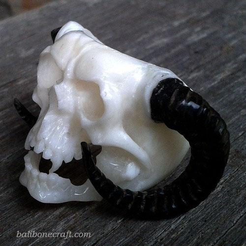 Skull-Ring-005